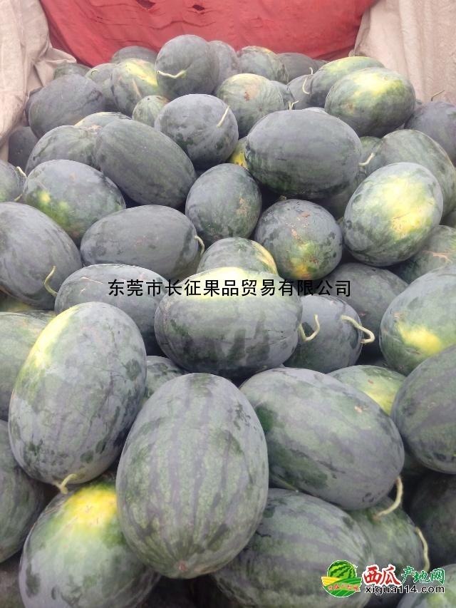 广东省东莞下桥水果西瓜批发代销市场