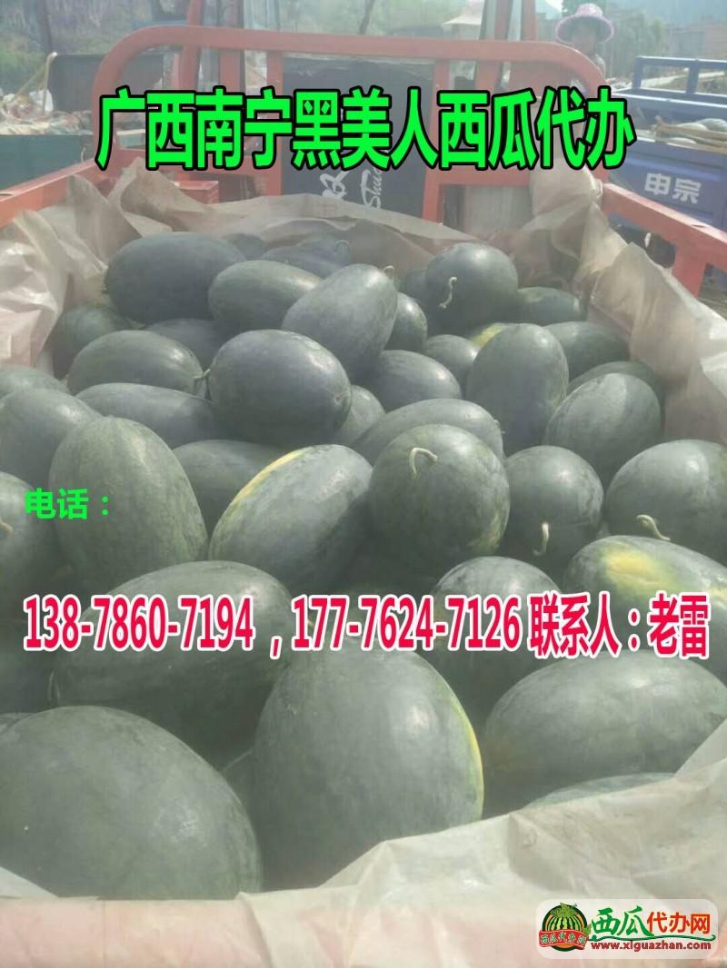 广西南宁水甜◐替●和广西崇左水甜◐替●代收中心