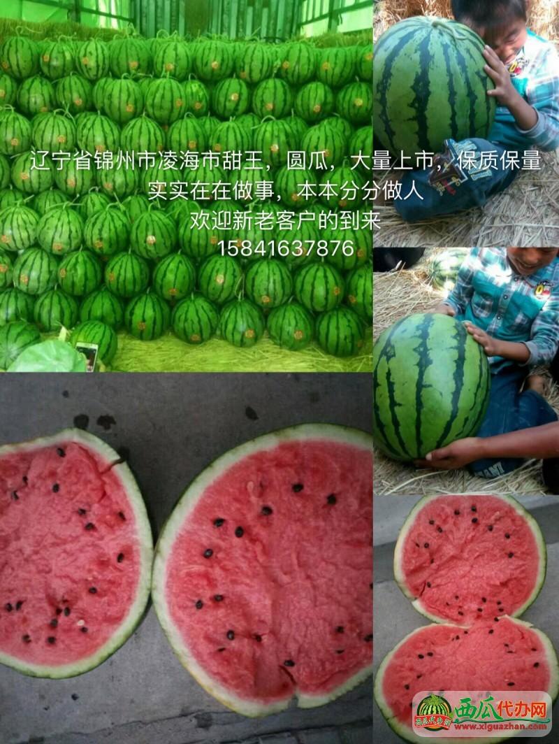 2018年辽宁凌海西瓜价格产地行情15841637876