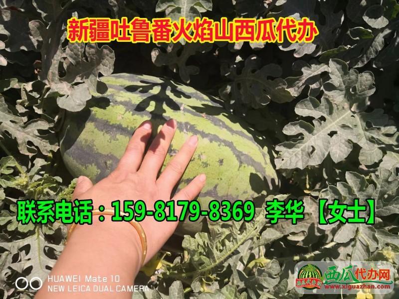 李华片_20180526213045