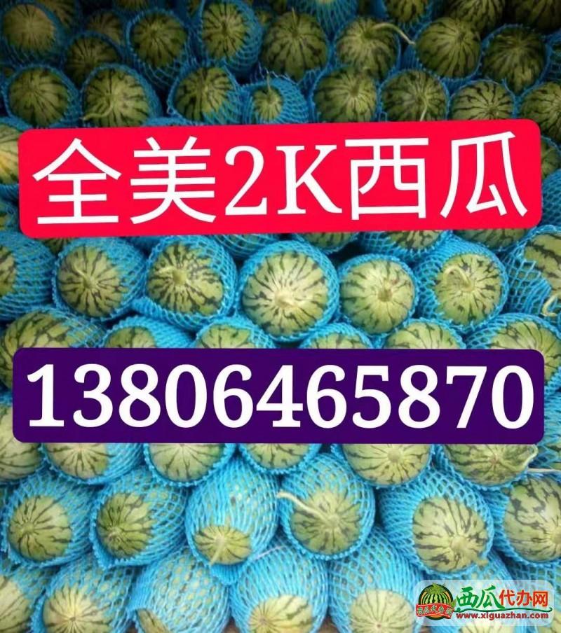 全美2K西瓜(gua)產地(di)直銷(xiao) 專業選瓜(gua)保(bao)證(zheng)質量