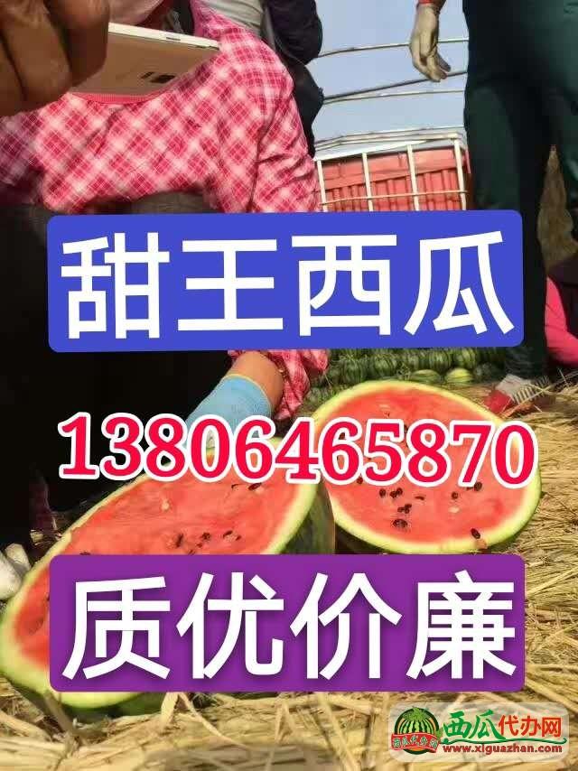 山东甜王西瓜产地大量供应