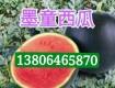 供应墨童无籽西瓜3斤以上糖度15