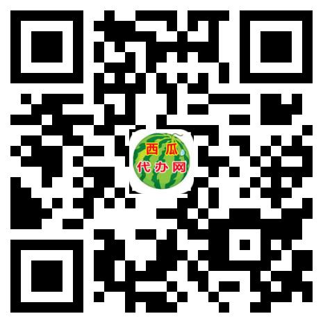 西瓜代办网15x15